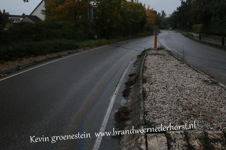 Reinigen_Wegdek_Randwegndb (2)
