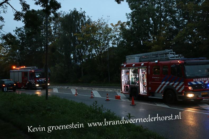Reinigen_Wegdek_Randwegndb (7)